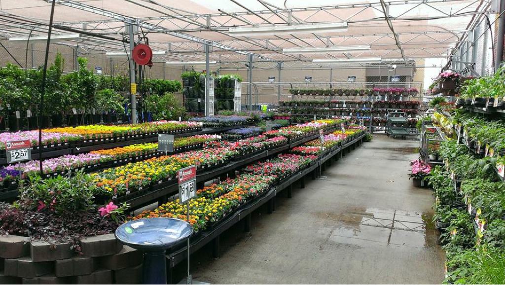 Walmart Gardening Center Fallsview Indoor Waterpark Vs